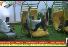 BBNaija 2019 RoundUp: Watch Everything You Have Missed Out From Day 11 Till Today